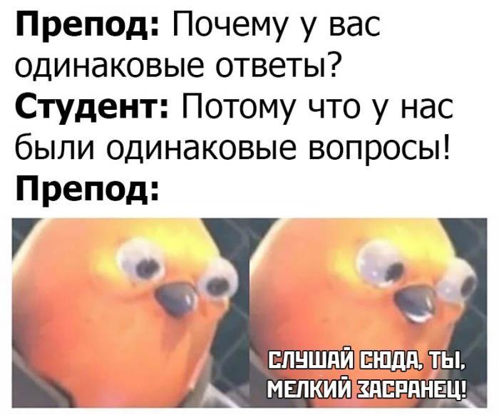Подборка прикольных фото (61 фото) 18.02.2020