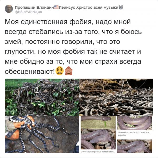 Тред в твиттере: пользователи рассказали о странных страхах (15 фото)