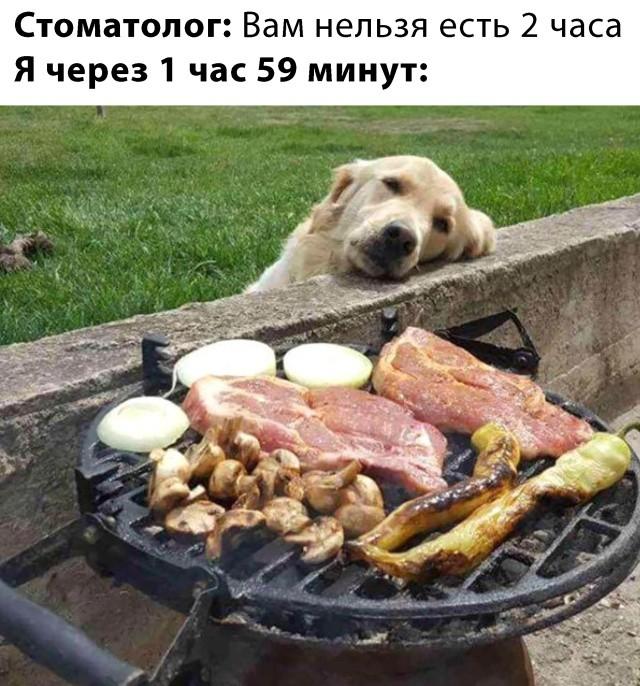 Подборка прикольных фото (61 фото) 20.02.2020
