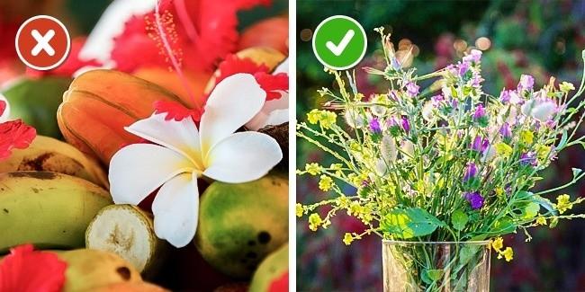 Советы, которые помогут продлить жизнь срезанным цветам (7 фото)