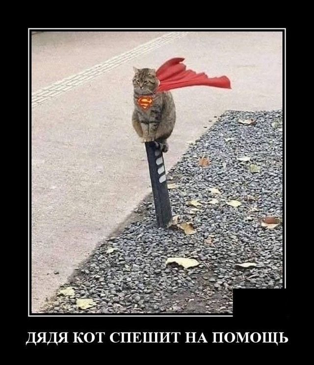 Демотиваторы (20 фото) 28.02.2020