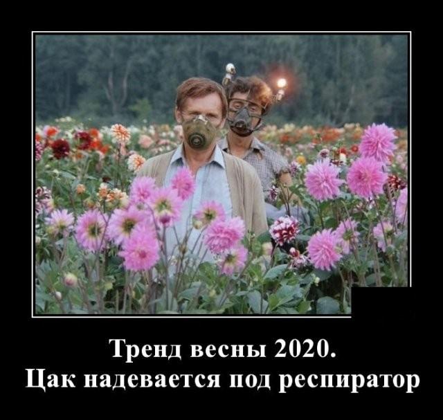 Демотиваторы (20 фото) 18.03.2020