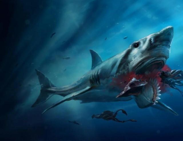 Геликоприон: Акула с циркулярной пилой на нижней челюсти (6 фото)