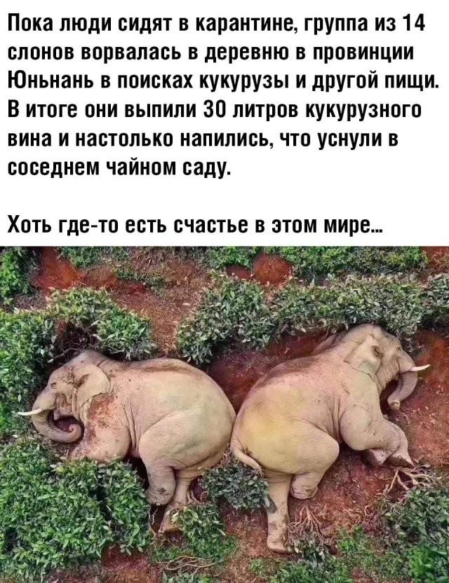Подборка прикольных фото (69 фото) 20.03.2020
