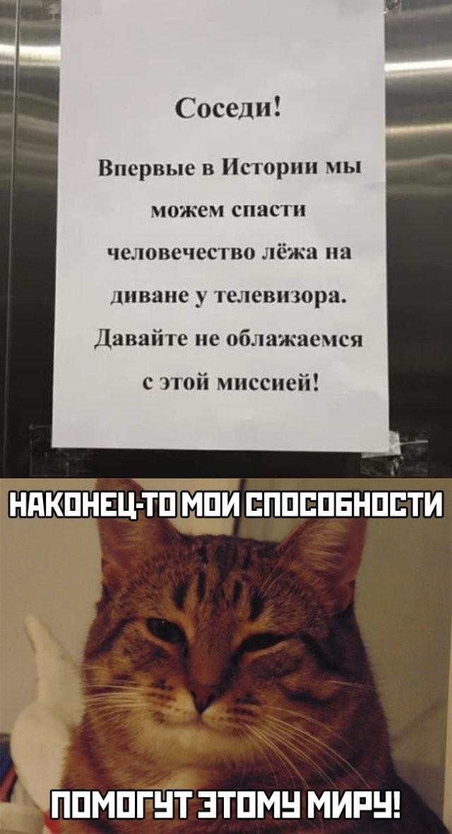 Подборка прикольных фото (66 фото) 24.03.2020
