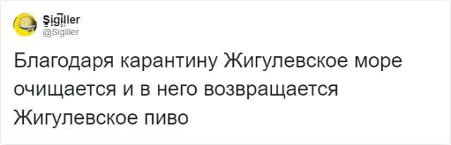 В Твиттере иронично шутят о положительных сторонах вируса (14 фото)