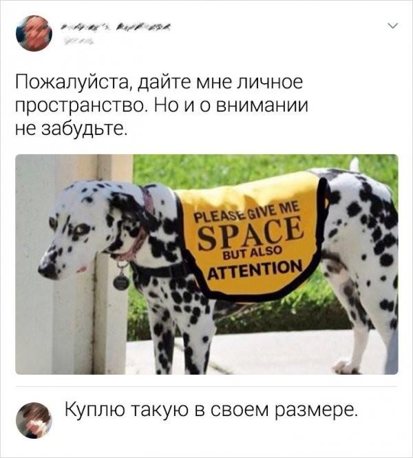 Подборка забавных комментариев с просторов Сети (16 фото)