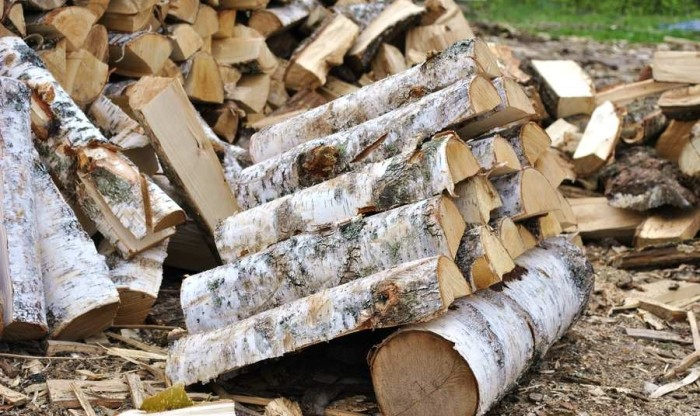 Как выбрать лучшие дрова (6 фото)