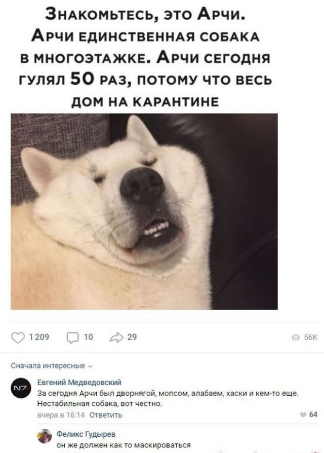 Смешные комментарии к постам в социальных сетях (20 фото)