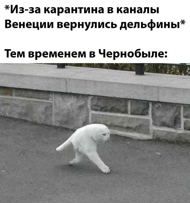 Подборка прикольных фото (69 фото) 07.04.2020