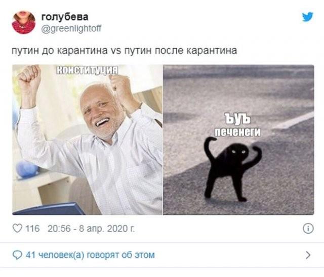 Реакция россиян на речь Путина про печенегов и половцев (17 фото)