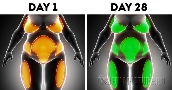 Что будет с вашим телом, когда вы не пьете алкоголь (7 фото)
