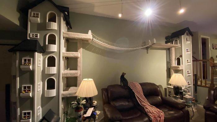 Американец построил в собственном доме целый город для кошек (8 фото)