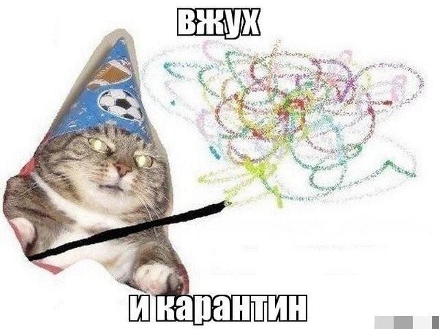 Карантин, удаленка и майские праздники: лучшие мемы из Сети (15 фото)