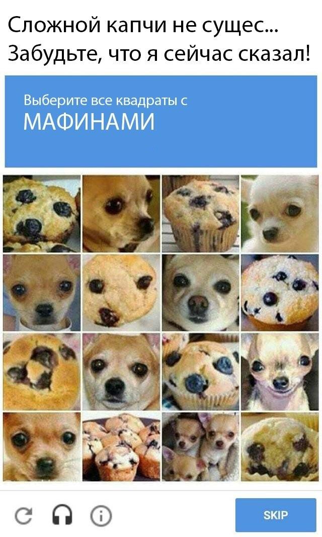 Подборка прикольных фото (66 фото) 28.04.2020