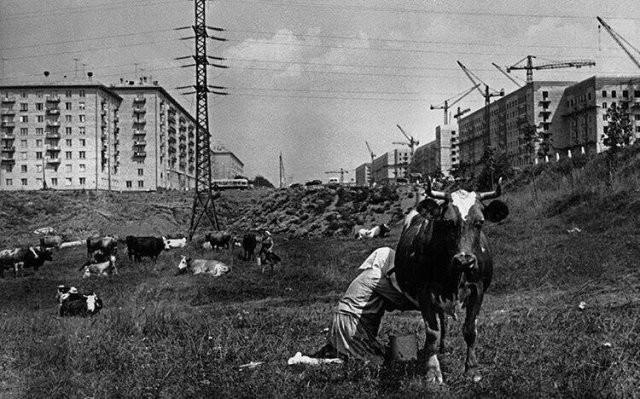 Редкие и интересные кадры из прошлого (10 фото)