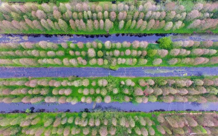Земля с высоты (14 фото)