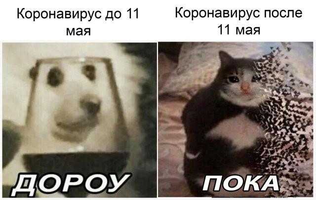 Подборка прикольных фото (68 фото) 30.04.2020