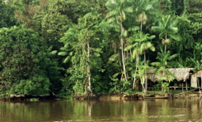 Острова в глубине джунглей (3 фото)