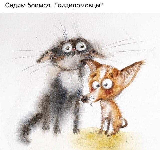 Карантин, летучие мыши и майские праздники: шутят в Сети (16 фото)
