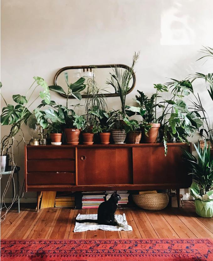 Как быстро сделать дом уютным (4 фото)