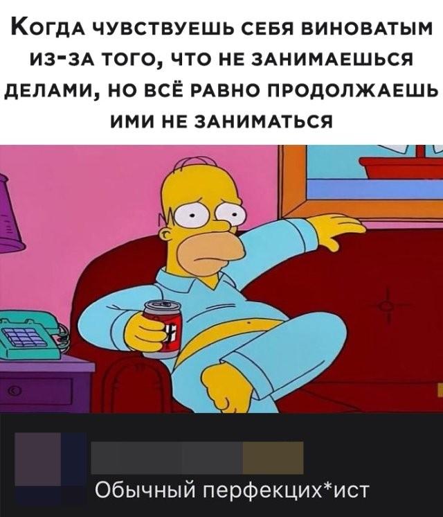 Подборка прикольных фото (65 фото) 08.05.2020