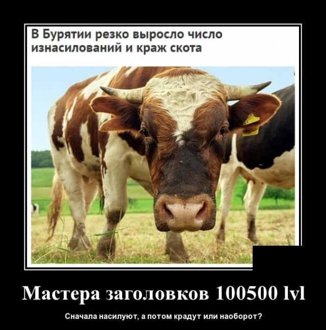 Демотиваторы (20 фото) 15.05.2020