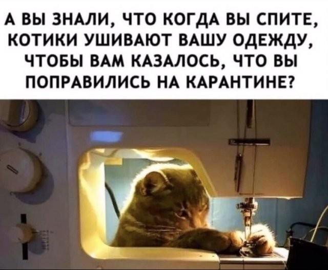 Коронавирус, маски и карантин: о чем шутят в Сети (16 фото)