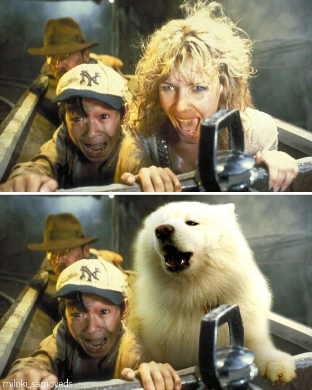 Парень заменил персонажей из сцен в культовых фильмах (14 фото)