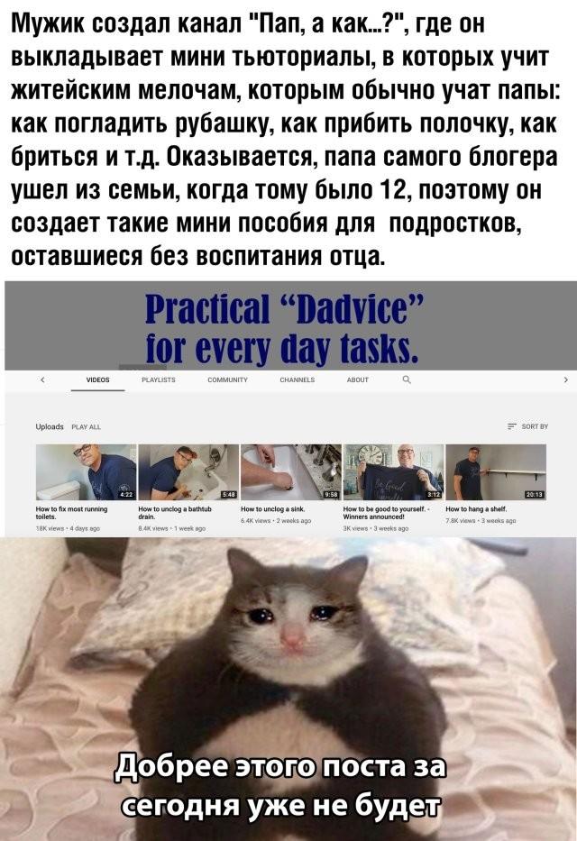 Подборка прикольных фото (61 фото) 21.05.2020