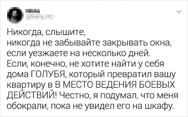 """Подборка из серии """"бывают в жизни огорчения"""" (15 фото)"""