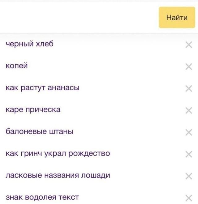 Безумные и спешные запросы, которые делают пользователи (15 фото)