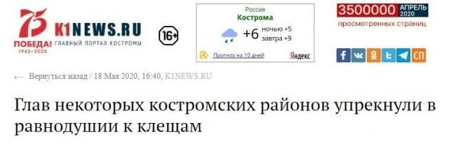 Эпичные заголовки в российских СМИ (15 фото)