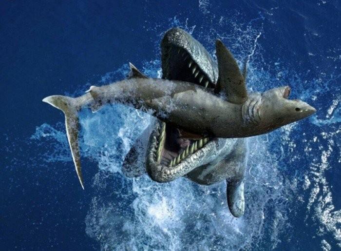 Водоплавающий тираннозавр или самый могущественный ящер моря (7 фото)