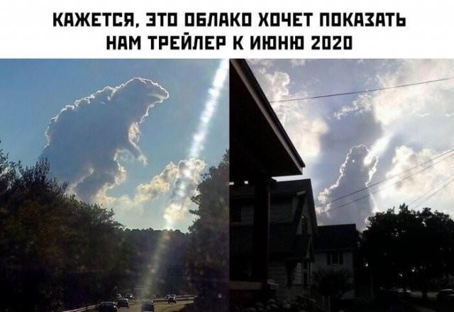 Немного шуток о 2020-м, карантине и коронавирусе (13 фото)
