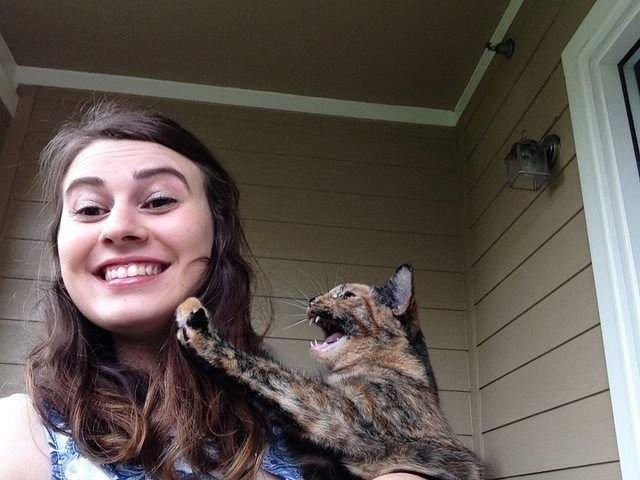 Животные, которые ненавидят фотографироваться (15 фото)