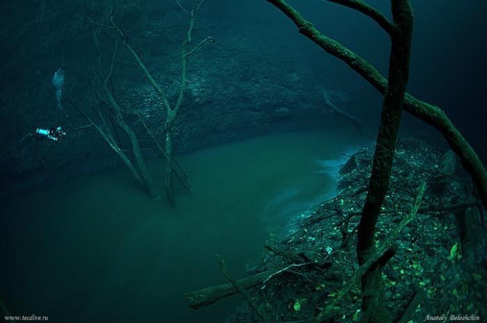 Таинственная подводная река Анхелита в Мексике (7 фото)