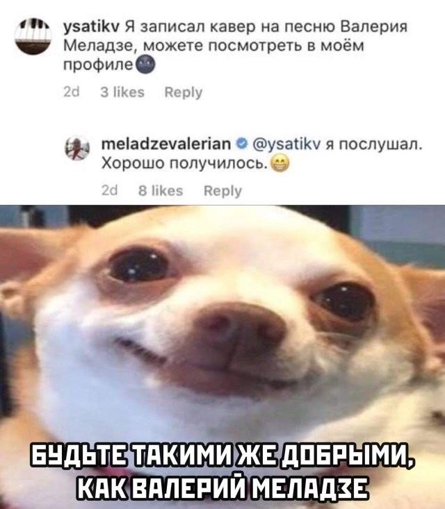 Подборка прикольных фото (62 фото) 03.06.2020
