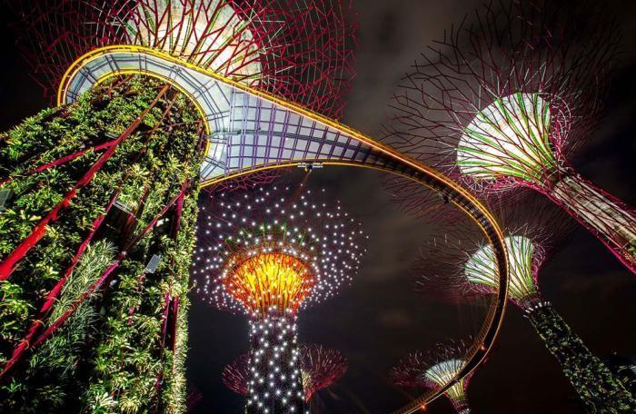 Футуристические сады в Сингапуре (25 фото)