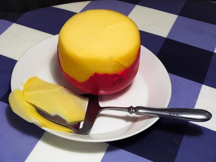 Блюда, которые нужно попробовать в Нидерландах (18 фото)