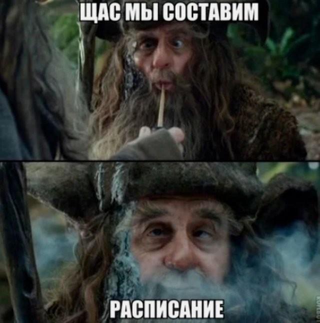 Москвичи шутят про прогулки по графику (15 фото)