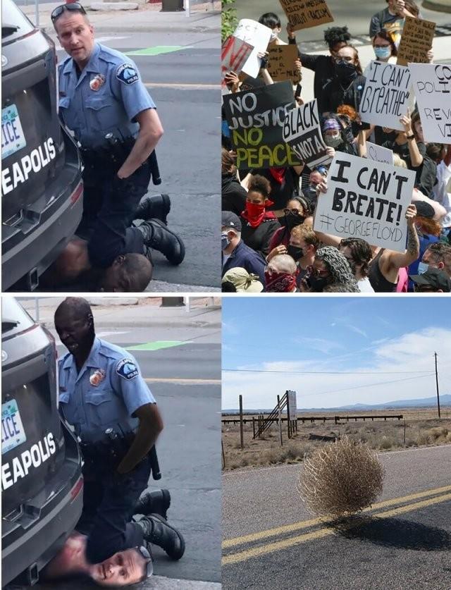 Реакция россиян на протесты в США (15 фото)