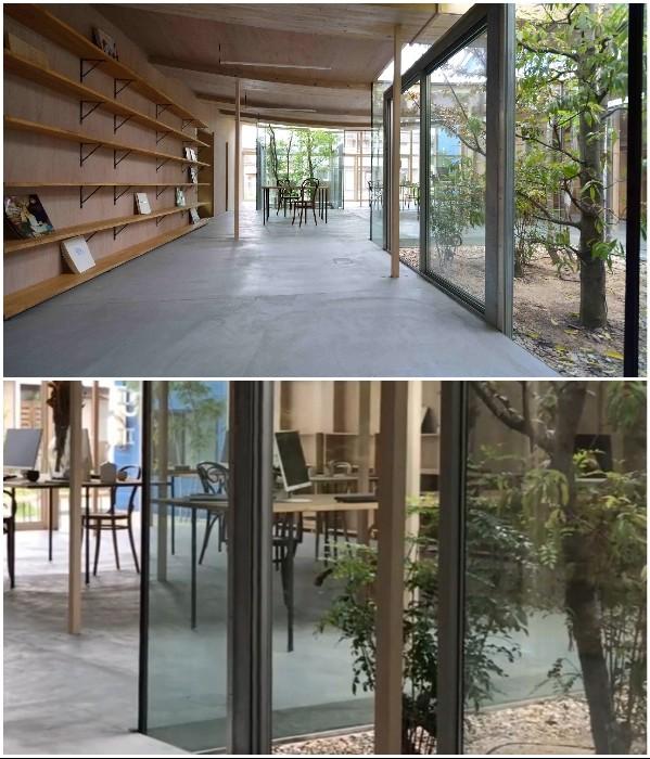 Архитекторы создали для себя офис, есть парк на крыше (10 фото)