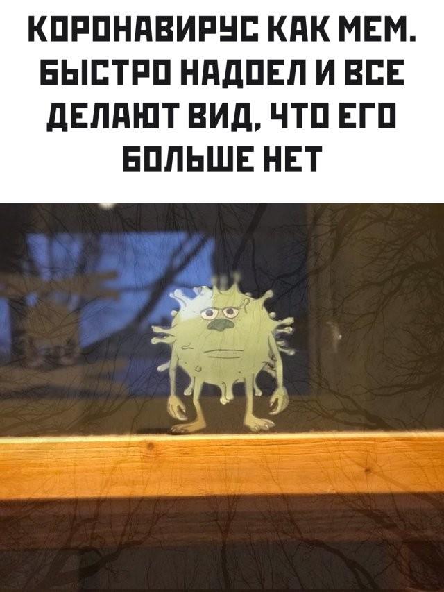 Подборка прикольных фото (62 фото) 11.06.2020