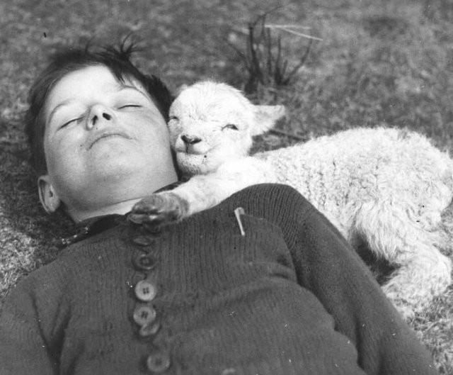 Подборка черно-белых фотографий прошлого века (15 фото)