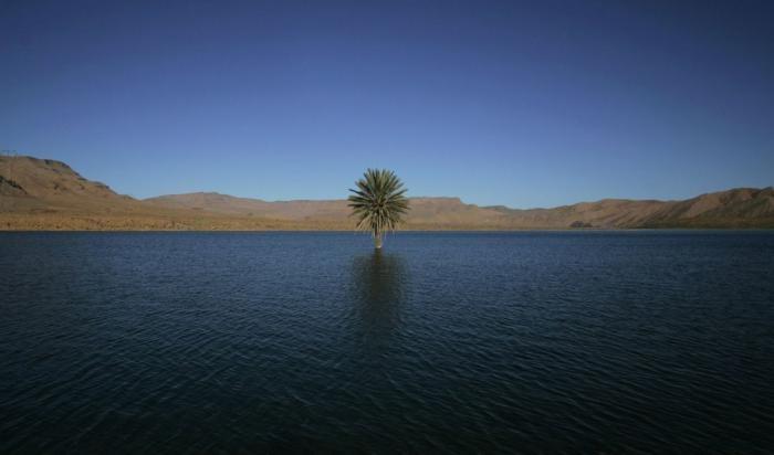 Как выглядела Сахара 5000 лет назад (10 фото)