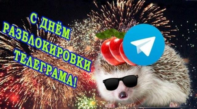 Мемы и приколы про отмену блокировки Telegram (15 фото)