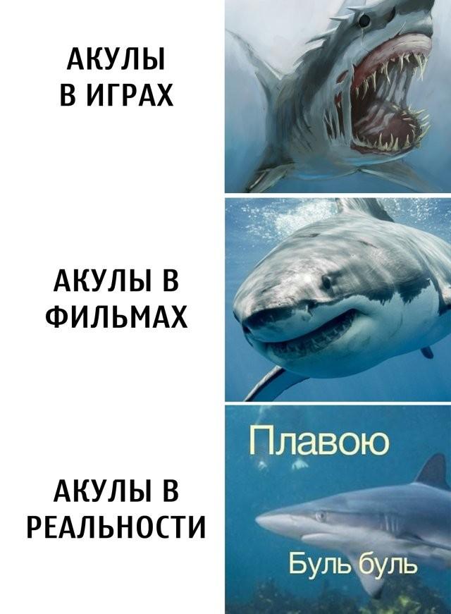 Подборка прикольных фото (63 фото) 23.06.2020