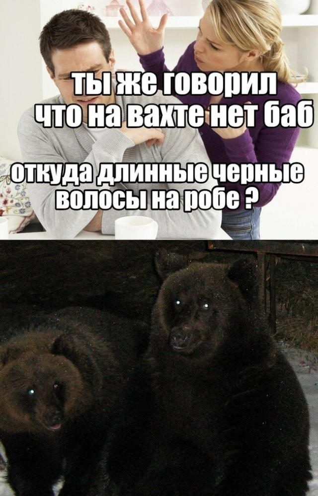 Шутки и мемы про работу на вахте (14 фото)