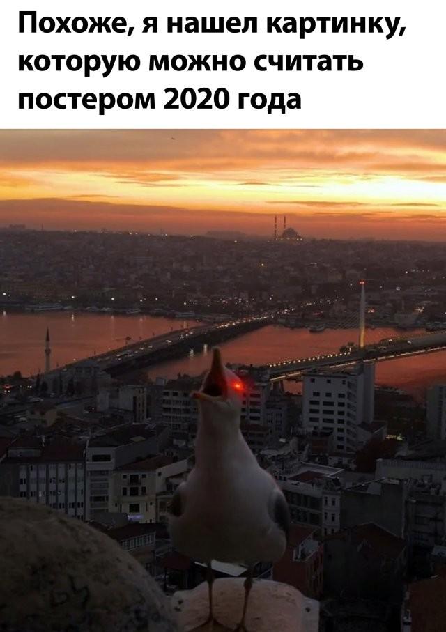 Подборка прикольных фото (62 фото) 29.06.2020